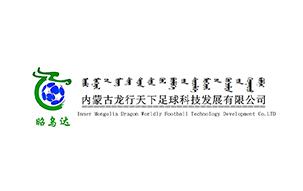 内蒙古龙行天下足球科技